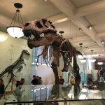 Photo de American Museum of Natural History