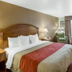 Photo of Comfort Inn & Suites near Medical Center