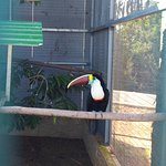 Photo of Pafos Zoo