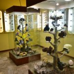 Kotsiomitis Natural History Museum