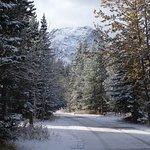 Photo of Mount Kidd RV Park