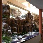 Die Hotelschildkröten
