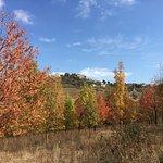 Surrounding hills in autumn