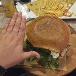 Mano paragonata al panino.