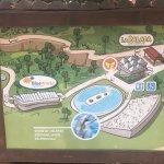 Foto de Palmitos Park