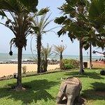 Photo de Lookea Royal Baobab