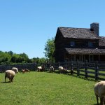 The 1850's American Farm - Just one of many living history exhibits at the Frontier Culture Muse