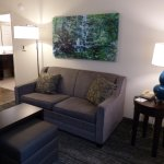 Sitting area in our suite -- Homewood Suites in Mahwah
