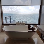 Bathtub overlooking the lagoon through the glass wall
