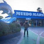 Photo of Mundo Marino