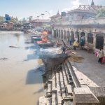 Cremations occurring at Pashupatinath Temple