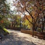Photo of Parco Villa Gregoriana
