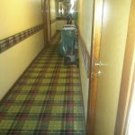 Photo of Hotel Pineta Palace