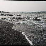DSC_0085_large.jpg
