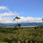 View toward the lake from Arenal Trail 1968