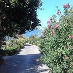 Foto de IBEROSTAR Creta Marine