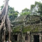 Photo of Ta Prohm