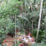 Yoga classes in the heart of the argentine rainforest. Yacutinga Lodge