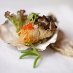 Oyster Kataifi with Cramy Truffel sauce