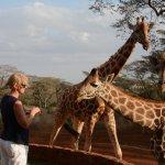 Foto di Giraffe Manor