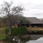 Photo de Elandela Private Game Reserve