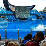 Photo of SeaWorld Orlando
