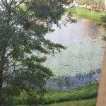 Foto de Westgate Lakes Resort y Spa