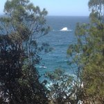 Foto de Bannisters by the sea