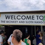 Monkey and Sloth Sancturary