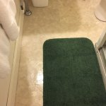 Small, but adequate--clean and comfortable! The bathroom floor shines! Only a shower, but it's c