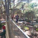 Parco delle ragnatele, passaggio sospeso