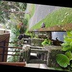 Foto de Pertiwi Resort & Spa