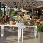 Photo de Hotel Alianthos Garden