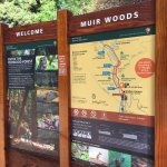 Informational signage at Muir Woods
