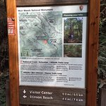 Trail maps in Muir Woods