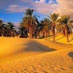 Boulaaouan Tours - Day Tours Foto