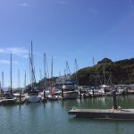 Tiburon Yacht Club view from Sam's