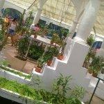 Photo of Botanical Garden (Jardim Botanico)