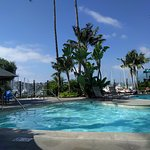 Photo of Best Western Plus Island Palms Hotel & Marina