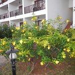 Photo of DoubleTree by Hilton Resort Zanzibar - Nungwi