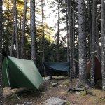 Blackwoods Campground Foto
