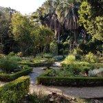 Photo of Stellenbosch University Botanical Garden