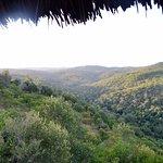 Photo de Ngorongoro Forest Tented Lodge