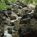Some rapids