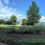Hyatt Regency Chesapeake Bay Golf Resort, Spa & Marina Foto