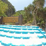 Photo de Phuket Tours Direct - Day Tours