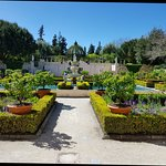 Photo of Hamilton Gardens