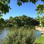 lakeside setting