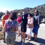 Safari Club Crete Foto
