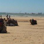 Essaouira and Atlantic Coast Tour with AzulAventuras